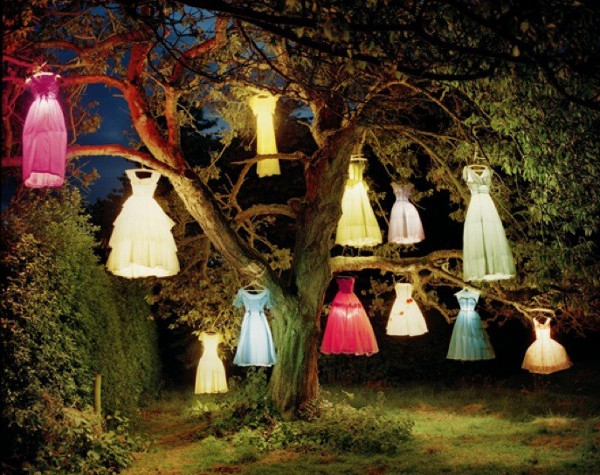 the dress lamp tree 2002